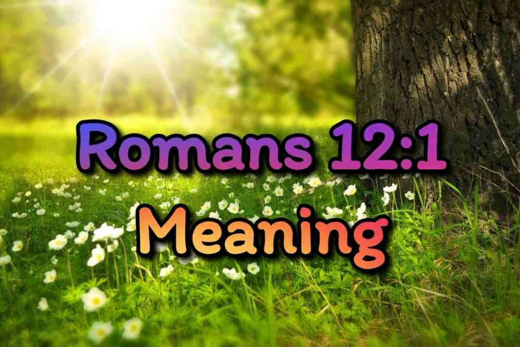 Romans 12-1 Meaning