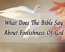the foolishness of god