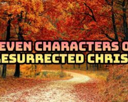 Seven Characters of resurrected Christ