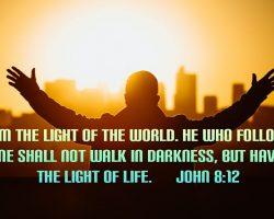 Bible Verse Meaning of John - 8:12